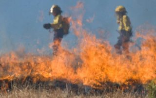 Grass Fire Safety Tips - Clare Mutual Insurance